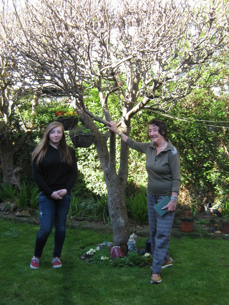Tree planted in memory of Robert DeCoeur in garden of Eilish Lynch