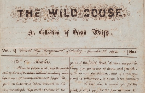 First edition of The Wild Goose (Mitchell Library, State Library of New South Wales)