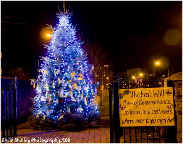 Tree of Remembrance from 2011