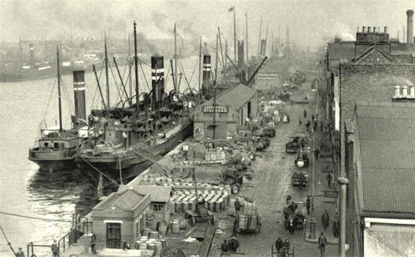 The SS Adela and other Tedcastle ships at Sir John Rogerson's Quay