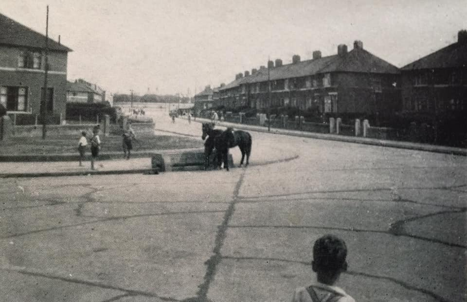 Kildare Road , Crumlin in the late 1930's